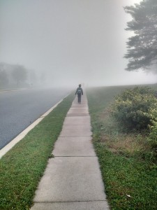 Walking confidently into the fog.  (Photo by S. Brown)