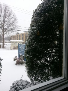 A snowy view from the back window